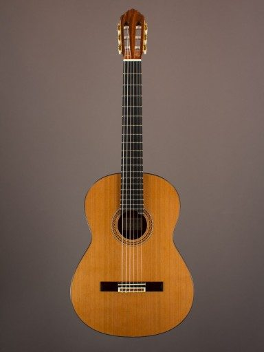 New Rein Concert Classical, Indian Rosewood/Cedar