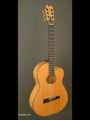 1982 D'Aquisto Nylon Euro Maple/Spruce Serial #1