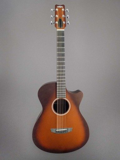 Rainsong Guitars APSE Al Petteway Special Edition Acoustic Guitar