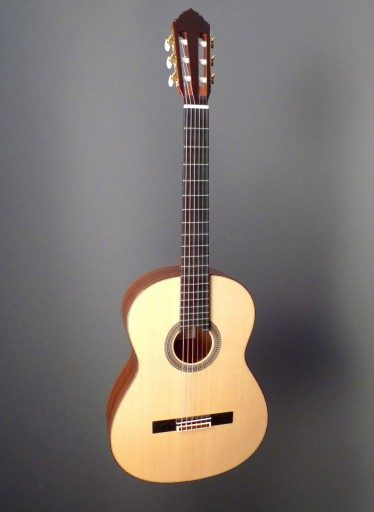 Rein Crossover Classical Classical Guitar