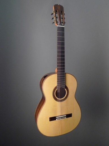 Flamenco Flamenco Guitar