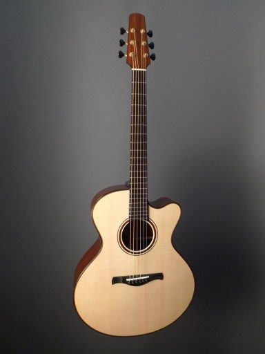 Traugott BK Acoustic Guitar
