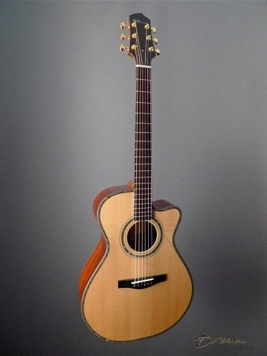 Wingert EVC Acoustic Guitar