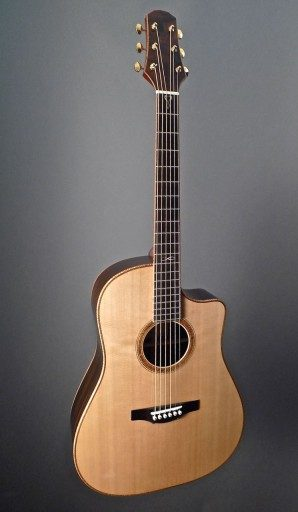 Tippin DST Acoustic Guitar