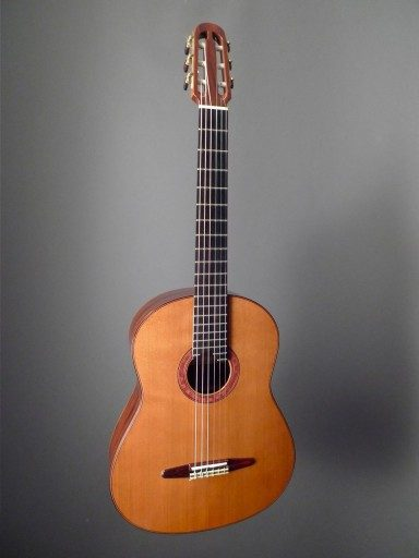 McGill, Paul Turbo Classical Guitar