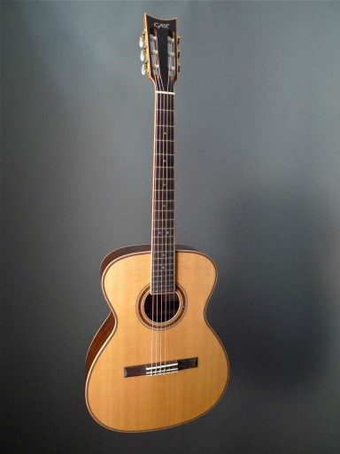 Fox Sierra OM Acoustic Guitar