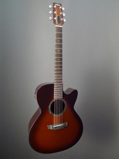 Rainsong Guitars CO-WS1000N2T Acoustic Guitar