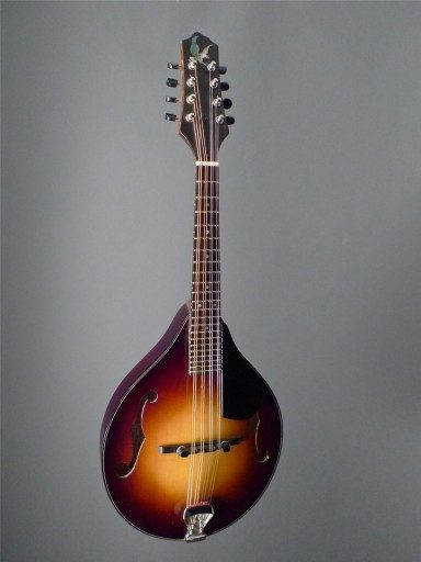 Wes Lambe Guitars A Style with F Holes Mandolin