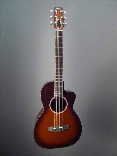 Rainsong Guitars P12T Acoustic Guitar