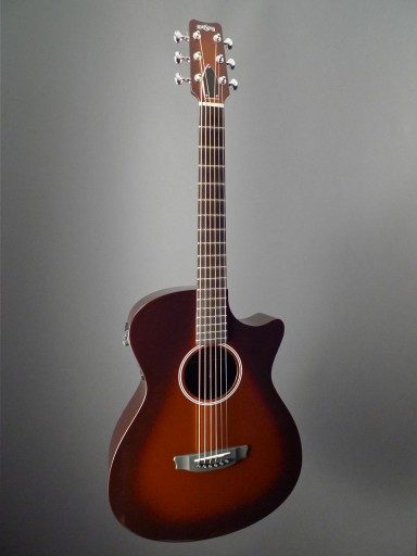 Rainsong Guitars APLE Al Petteway Limited Edition Acoustic Guitar