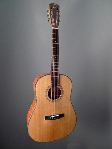 Dunwell Guitar The Tree Acoustic Guitar