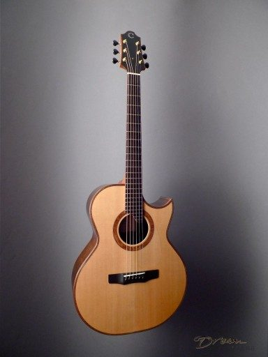 Charis (Bill Wise) Dream Series SJ Acoustic Guitar