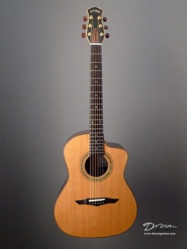 Petros Applecreek FS Acoustic Guitar