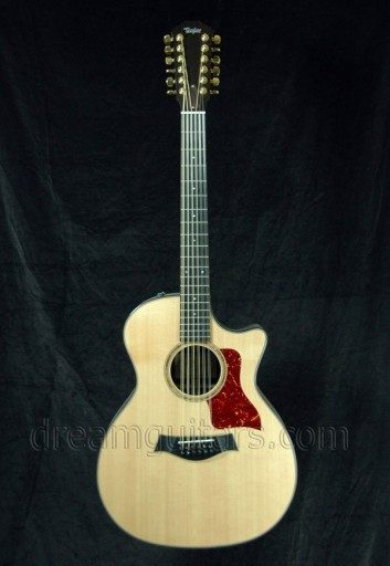 Taylor Guitars 12 String Acoustic Guitar