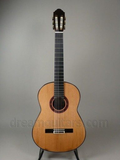 Fischer Guitars Taut Classical Guitar