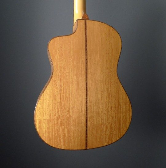 Ceylon Satinwood Back and Sides
