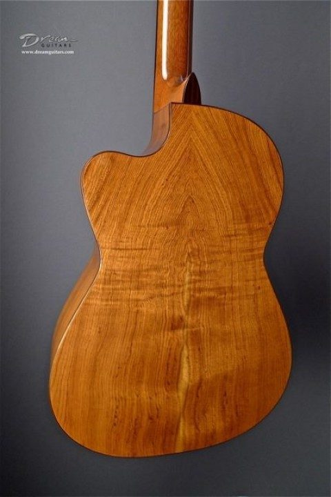 Palo Escrito Rosewood Back and Sides