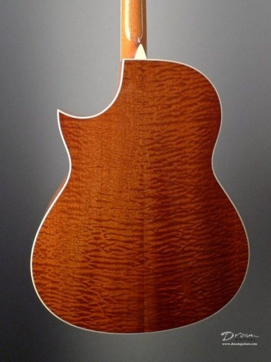 Sapele Back and Sides