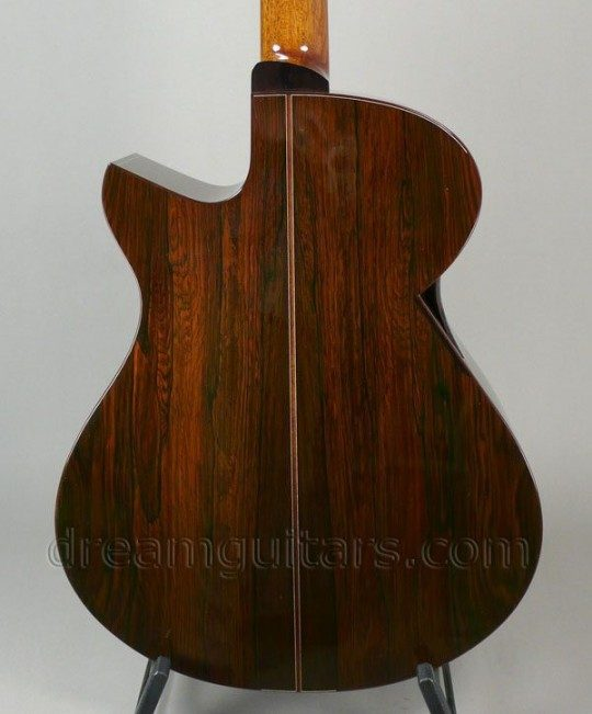 Stunning Brazilian Rosewood Back and Sides