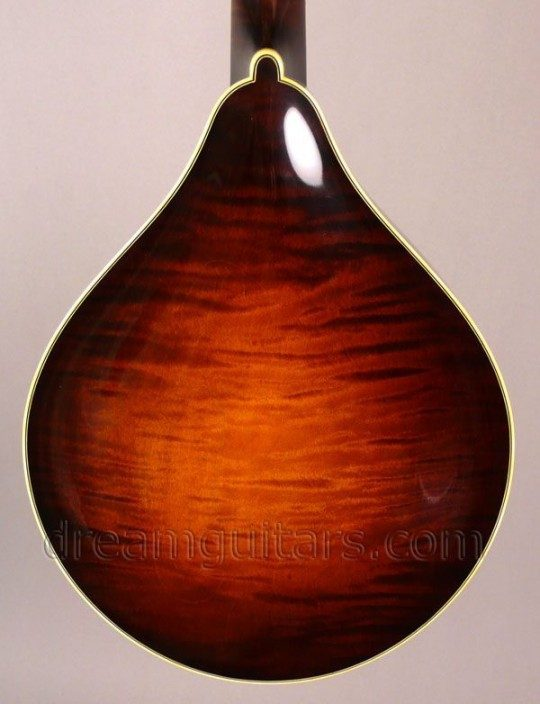 Flamed Maple Back and Sides, Varnish FInish