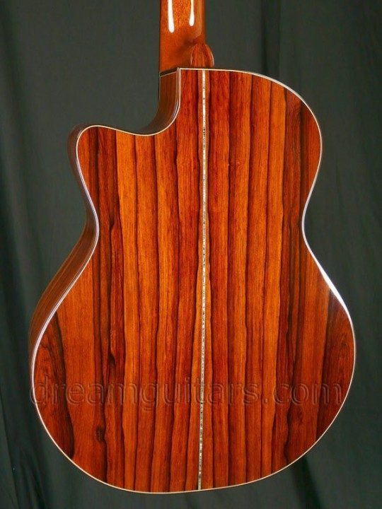 Madagascar Rosewood Back and Sides