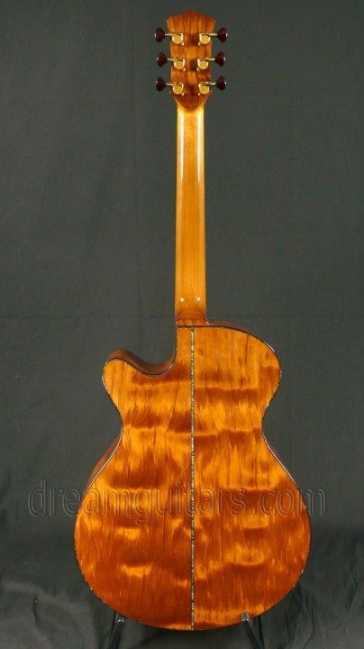 Perhaps the rarest tonewood in the world!