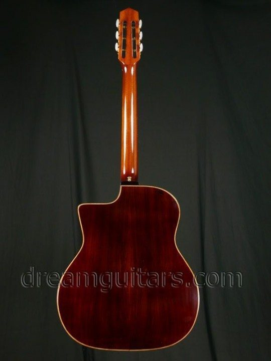 Gypsy Style Acoustic Guitar