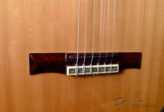 Cocobolo Rosewod String Through Bridge