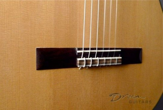 Brazilian Rosewood, String Through Bridge
