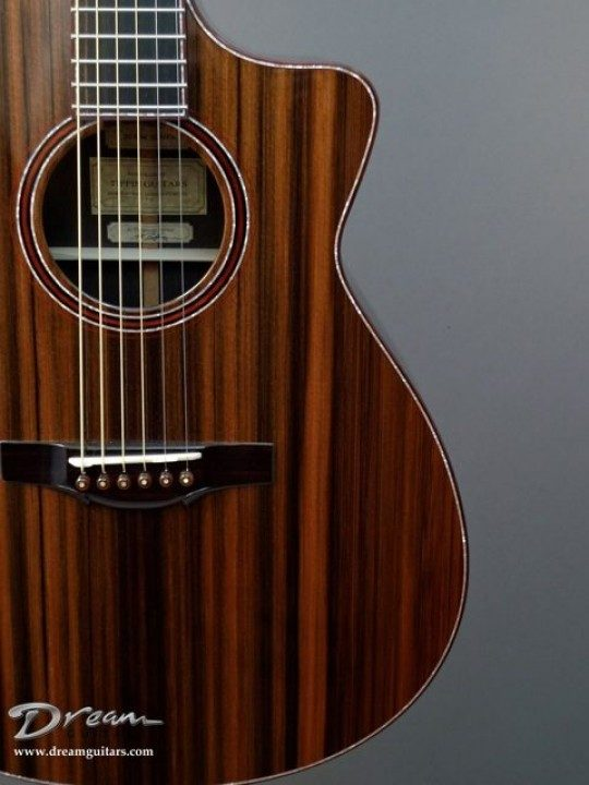 Tippin Guitars Crescendo Al Petteway Signature Acoustic Guitar