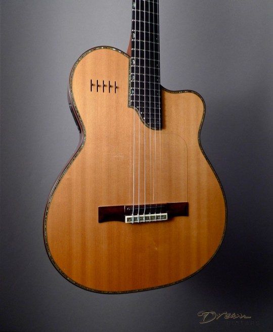 Spruce Top and Barbera Soloist Pickup