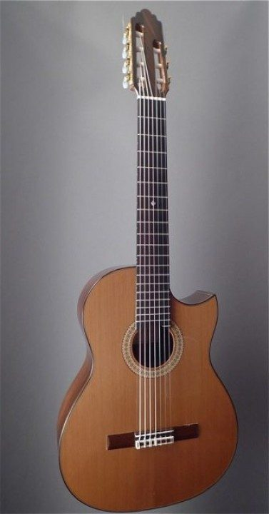 Brandt, Greg Concert 7 String Classical Guitar