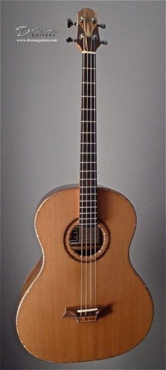 Indian Hill Tenor Acoustic Guitar