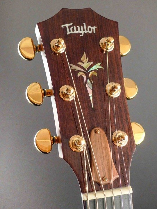 Brazilian Rosewood Headplate Torch Inlay