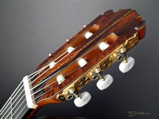 Rosewood Headplate