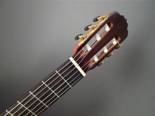 Brazilian Rosewood Headplate  Inlay
