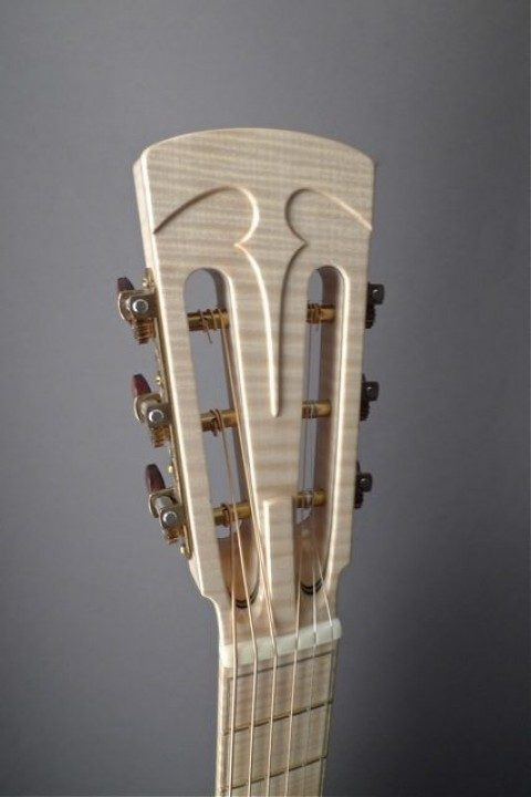 Curly Maple Headplate None Inlay