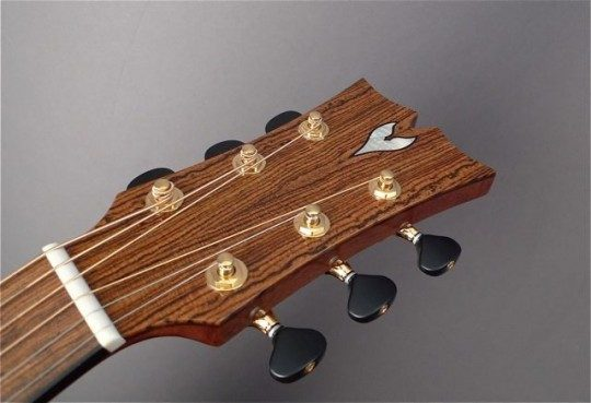 Bocote Headplate MOP Inlay Framed in Ebony