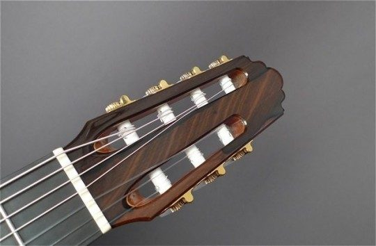 Brazilian Rosewood Headplate None Inlay