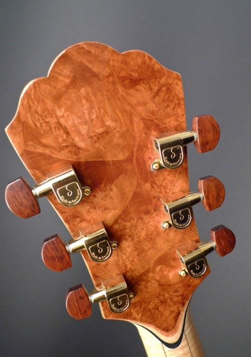 Gotoh 510 Delta Series Gold Tuners with Snakewood Buttons
