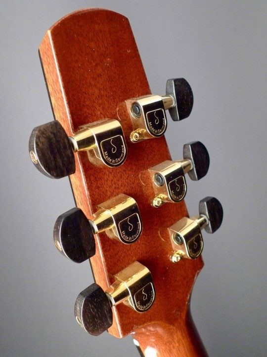 Schaller Gold Tuners With Ebony Buttons