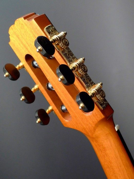 Gotoh Gold Etched With Ebony Buttons Tuners
