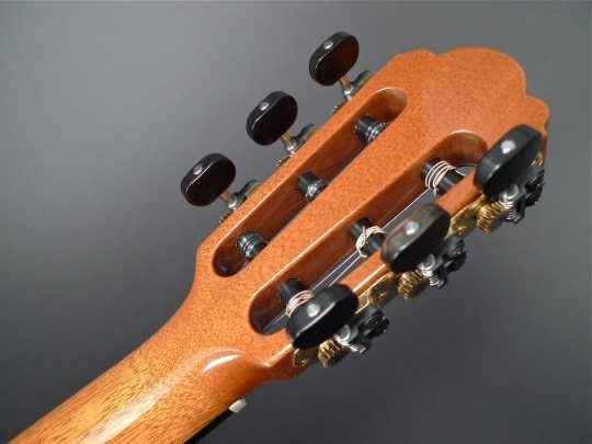 Gilbert Gold With Ebony Buttons Tuners