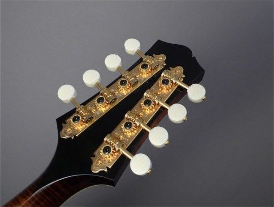 Gold With Ivoroid Buttons Tuners