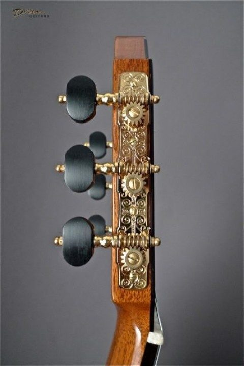 Gold Etched With Ebony Buttons Tuners