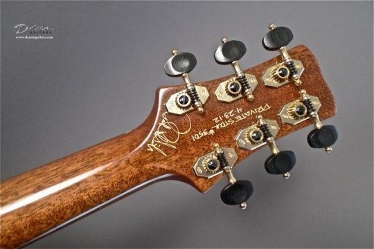 Robson Gold With Ebony Buttons Tuners