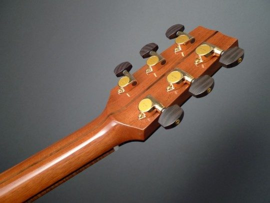 Gotoh Gold With Ebony Buttons Tuners