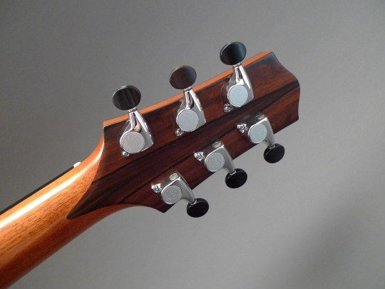 Gotoh 510s Chrome with small ebony buttons
