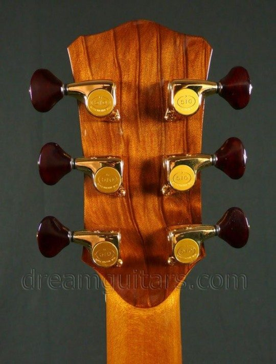 Gold Gotoh 510 with Cocobolo Buttons