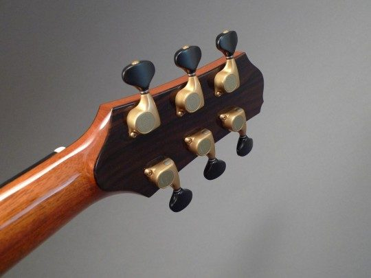 Bronze Gotoh 510 with Ebony Buttons